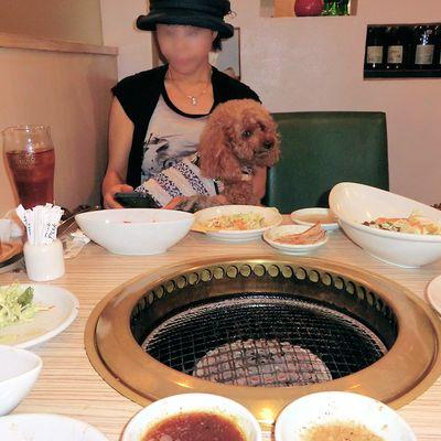 肉菜工房 うしすけ お台場デックス東京ビーチ店の写真