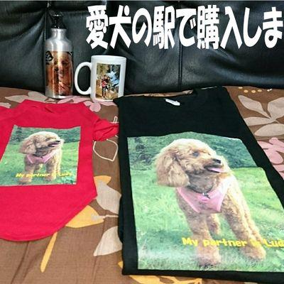 愛犬の駅(あいけんのえき)の写真