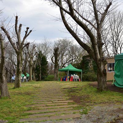 千葉県立青葉の森公園の写真