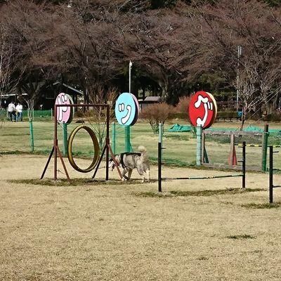 那須千本松牧場 の写真