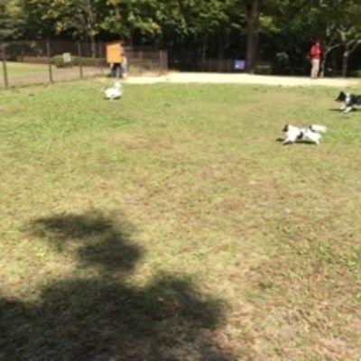 那須高原サービスエリア(下り)の写真