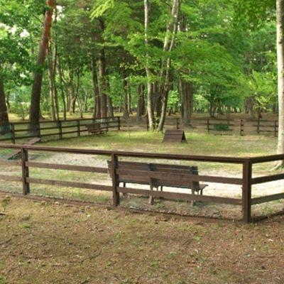 白州・尾白の森名水公園べるがの写真