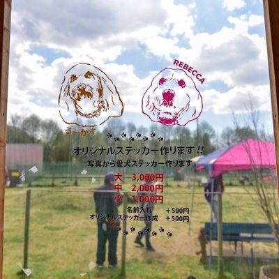 オリーブの森 ドッグラン&カフェの写真