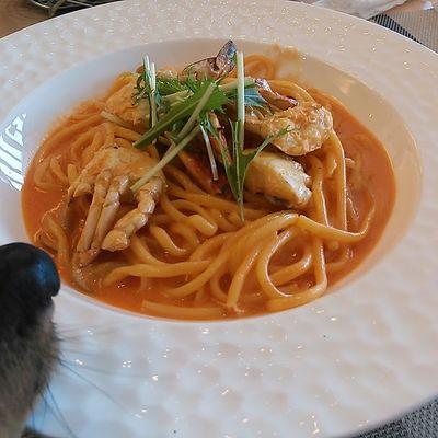 浜名湖レークサイドプラザ ドッグカフェ&ドッグランcafé The Rodhos(ロードス)の写真