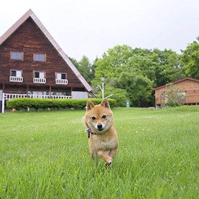まきばの家の写真