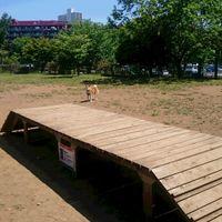 「昭和記念公園のドッグラン」の画像