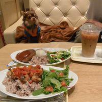 「犬連れが多くいるカフェ」の画像