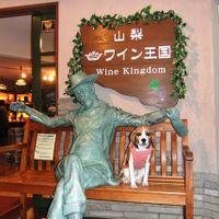 「山梨の観光名所を愛犬と共に楽しめる」の画像