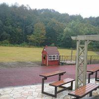 「森の中のドッグカフェ」の画像