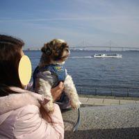 「臨港パークは景色も最高、おしゃれにお散歩」の画像